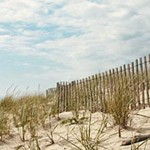 1240x390-hamptons-beach